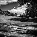 Mountain Field by Bob Orsillo