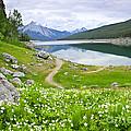 Mountain Lake In Jasper National Park Canada by Elena Elisseeva