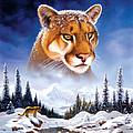 Mountain Lion by MGL Studio - Chris Hiett