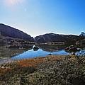 Mountain Marshes 4 by Joe Wyman
