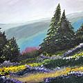 Mountain Meadow by Jane Steelman