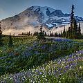 Mountain Meadow Serenity by Mike Reid
