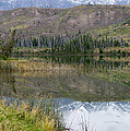 Mountain Reflections by Angela Patterson