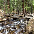Colorado Mountain Stream 2 by William Morgan