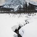 Mountain Stream by David Hanlon