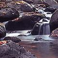 Mountain Stream by Harold Rau