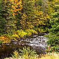 Mountain Stream In Autumn by Les Palenik