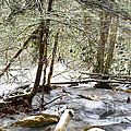 Mountain Stream In Winter by Thomas R Fletcher
