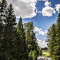 Mountain Stream by Jessica Dobbs
