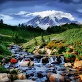 Mountain Stream by Kelly Bryant