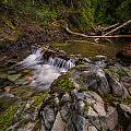 Mountain Stream by Kevin Clifford