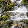 Mountain Stream by Ralph Brunner