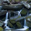Mountain Stream by Randy Walton
