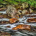 Mountain Stream Rushing After Heavy Rain E134 by Wendell Franks