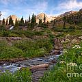 Mountain Stream by Steve Stuller