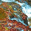 Mountain Stream Waterfall Autumn by A Gurmankin