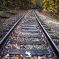 Mountain Tracks by Debra and Dave Vanderlaan