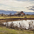 Mountain View Barn by Heather Applegate