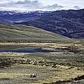 Mountain View by Carolyn Fox