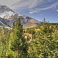 Mountain Vista by Wendy Elliott