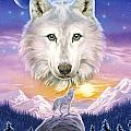 Mountain Wolf by Robin Koni