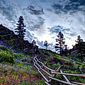 Mountain Wooden Fence  by John Lee