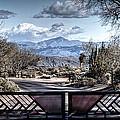 Mountainous Splendor by Deborah Klubertanz