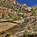 Mountains And Virgin River - Zion by Jon Berghoff