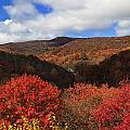 Mountains At Graveyard Fields by Jill Lang