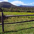 Mountains Beyond The Fence by Donna Cavanaugh
