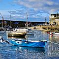 Mousehole Harbour Morning by Susie Peek