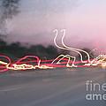 Movement by Stephanie Kripa