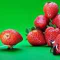 Moving Strawberries To Depict Friction Food Physics by Paul Ge