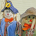 Mr And Mrs Scarecrow by Ann Horn