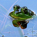 Mr. Frog by Donna Brown