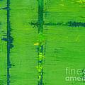 Mr. Green by Amanda Sheil