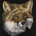 Mr. Red Fox by Bob Williams