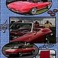 Mr. Sox Corvette by Bobbee Rickard