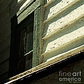 Mrs. Cameron's Window by RC DeWinter