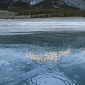 Mt. Abraham And Ice On Abraham Lake by John Shaw