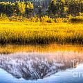 Mt Adams Reflection by Matt Hoffmann
