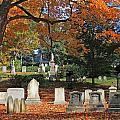 Mt Auburn Cemetery 12 by Michael Saunders