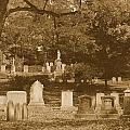 Mt Auburn Cemetery 13 Sepia by Michael Saunders