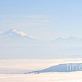 Mt. Baker From San Juan Islands by Tap On Photo