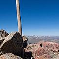 Mt. Bierstadt Summit by Robert VanDerWal