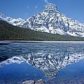 1m3641-mt. Chephren Reflect by Ed  Cooper Photography