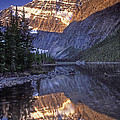 Mt Edith Cavell Reflection by Dave Mills