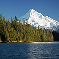 Mt Hood And Lost Lake by Brian Jannsen