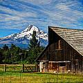 Mt Hood Oregon by Donna Bevington