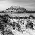 Mt Illimani In Monochrome by James Brunker